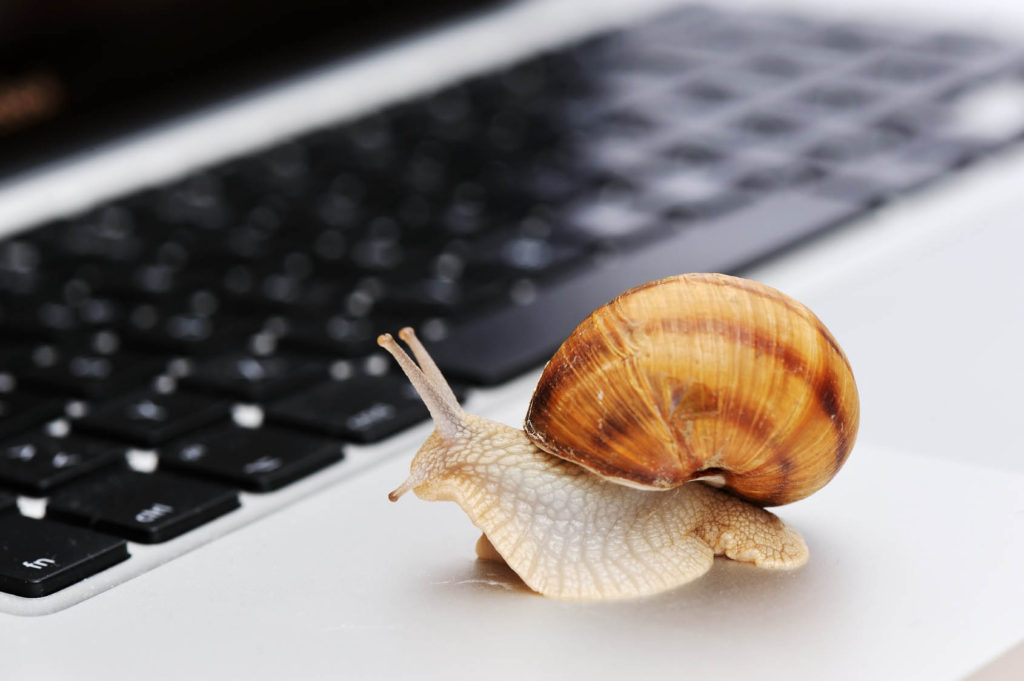 Laptop computer with a snail crawling across it